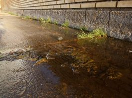aguas fecales ceip higuerita pozo de lcamino